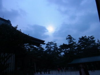 RIMG2350出雲ほ太陽.jpg